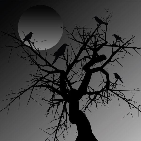 bird-tree